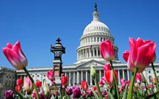 州税改战遭批评 议员:别老和联邦扭劲