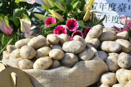 馬鈴薯是后里地區傳統作物,后里區栽種馬鈴薯面積約217公頃,產量占全市產量三分之一,是市內最大產區。