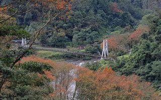 鸠之泽享泡汤  自然步道枫红森林疗愈