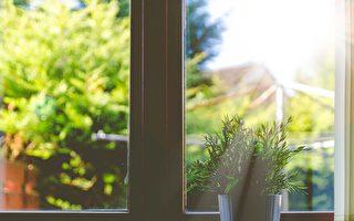 機遇之窗:高性能玻璃幫你節能