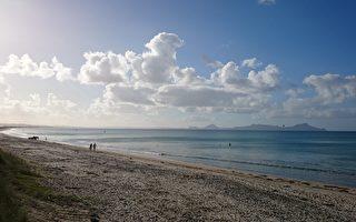 終創紀錄 新西蘭1月氣溫史上最高