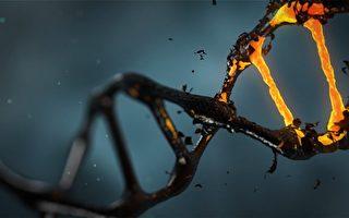 治癌新療法:激發癌細胞「自殺機制」