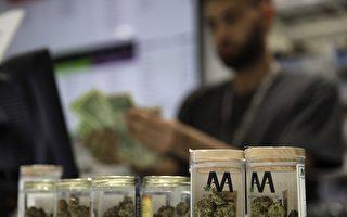 大温更多城市查禁大麻贩售