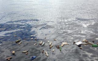 塑料垃圾污染嚴重影響珊瑚礁健康