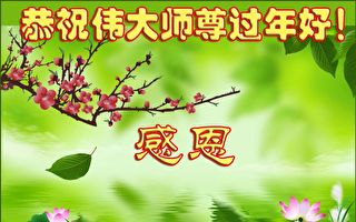戊戌感恩 全球法輪功學員祝師父新年快樂