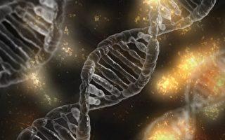打坐可逆轉引發焦慮的DNA分子反應
