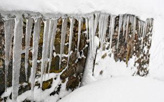 极寒天气席卷欧洲酿28死 多国降暴雪