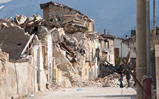 是什么使动物逃过地震和海啸?