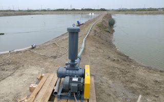 气温持续下探 水产养殖业保温大作战