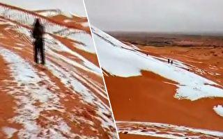 美到让人屏息!撒哈拉沙漠下雪 色彩震撼到炫目