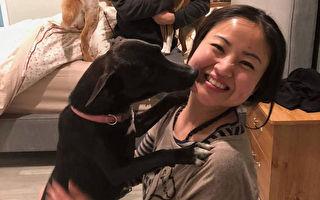 白腳蹄不吉利 台流浪犬幸遇女華僑去美國