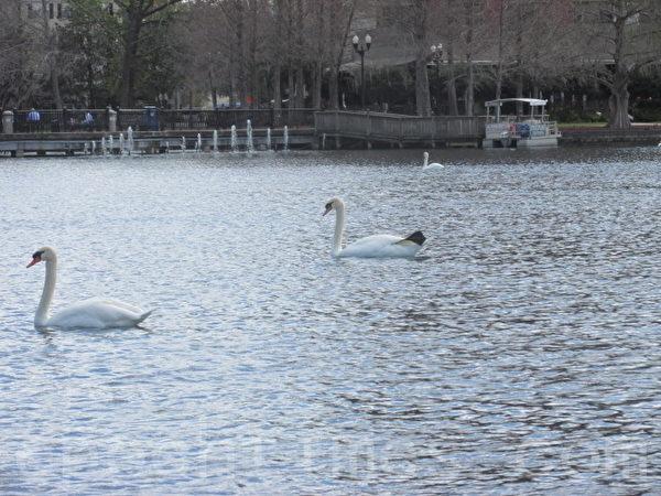 伊欧拉湖边公园