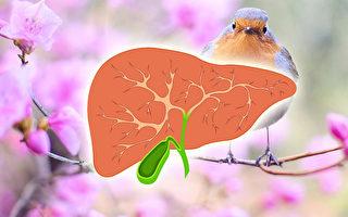 春天最应排毒 中医师教你这样做 轻松养肝