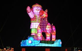 台湾灯会闪耀嘉义 蔡英文为狗年主灯开灯