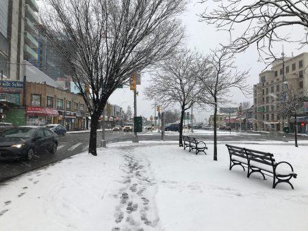 到下午4点,雨雪下得更大,法拉盛市政厅前面的安全岛一片银装素裹。