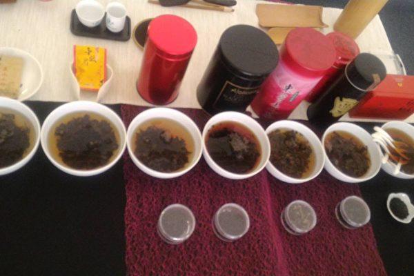 穀雨展生息 品茶好味道