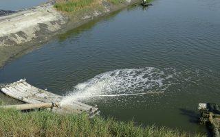 鱼虾问题多 请养殖户防范水质剧烈变化