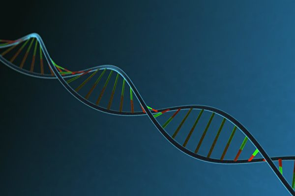 中國基因編輯嬰兒幕後謎團重重