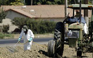 邻居乱喷杀虫剂 圣谷居民投诉
