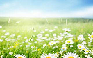 春季多发病与养生要点