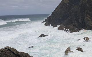強風呼嘯中女子走到海邊 驚見滿沙灘湧動著奇怪的東西