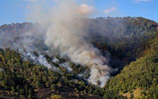 新洲南部海岸叢林大火 吞噬至少70個住宅商戶