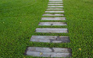 """男子看到草坪的""""补丁""""在动 走近一看愣住了"""
