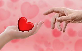 捐赠心脏体外存活7小时18分 墨尔本医院创世界纪录