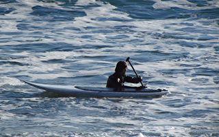 他们在海港边划轻艇 没想到群鲸也想一起玩!