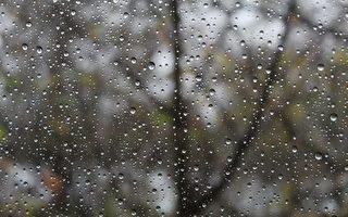 墨爾本本週末迎來降雨 大家出行請留意