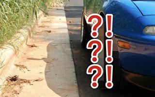 新车没买多久 车轮胎里住了什么?你猜得到吗?