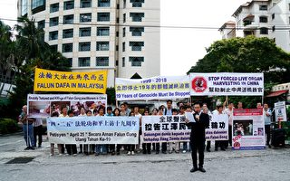 馬來西亞紀念四二五和平上訪十九週年