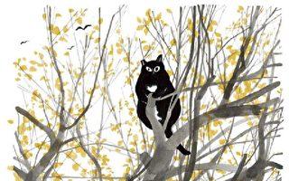 貓天下(3)不問世事的慵懶貓