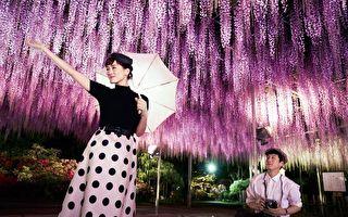 綾瀨遙扮驕縱公主 穿越時空與坂口健太郎談愛