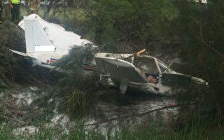 悉尼濱城機場附近飛機墜毀 機上女子奇跡生還