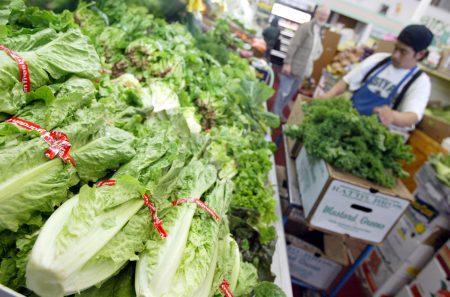 疾病控制与预防中心官员认为,这波疫情与来自亚利桑纳州的切碎长叶生菜有关。图为超市销售的长叶生菜。