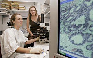 新型納米聚合物可用於定位癌細胞