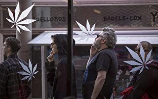 統計:大麻開售首季 加州縣市接受度低