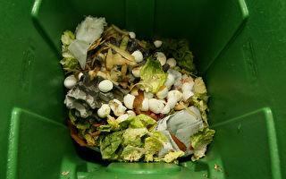 每年人均浪费食物400公斤 加政府将计划解决