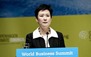 李小琳以新身份出席博鳌论坛