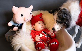 狗狗错拿宝宝玩具 它一番超温暖补偿笑翻众人