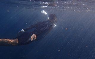 鯨魚「報恩」 從鯊魚口邊救下海洋學家