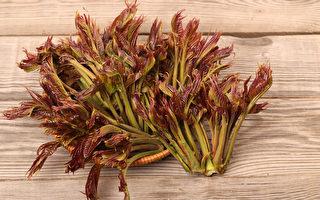 亞洲第一抗氧化蔬菜「香椿」 吃錯卻危險