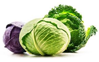 高麗菜是天然胃藥 還能預防4種癌症