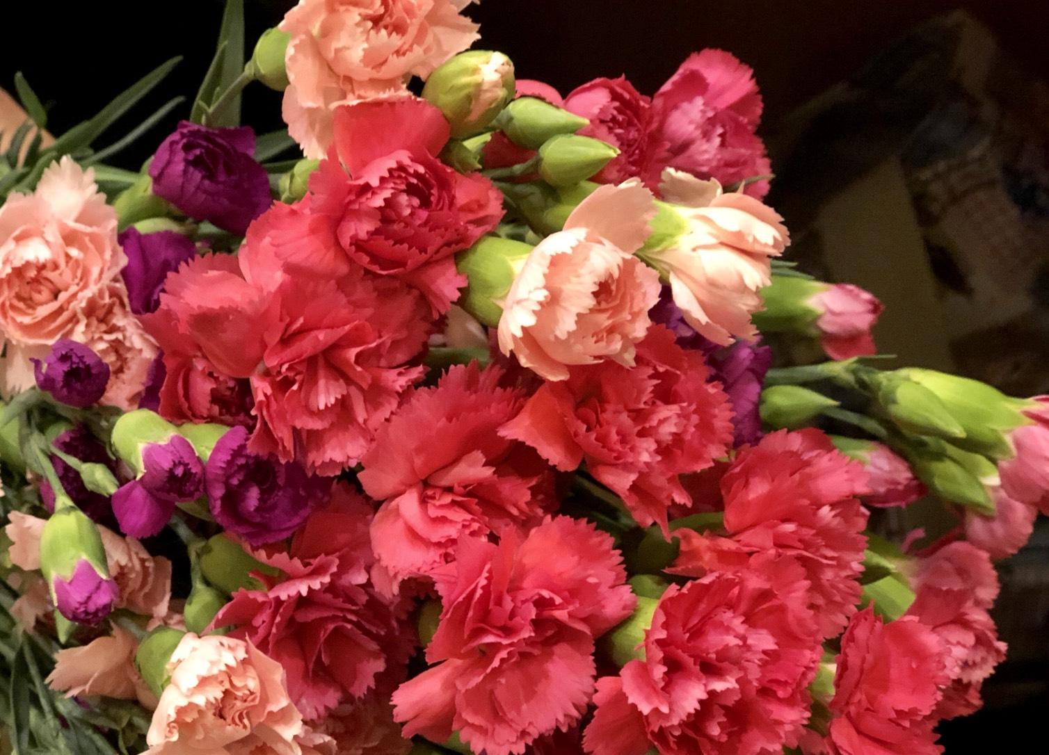 象徵母親節的康乃馨。(謝五男/大紀元)