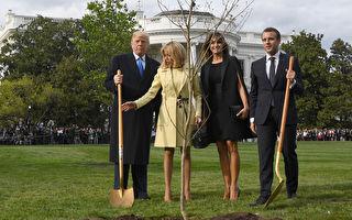 川普和马克龙刚种的树苗失踪啦!白宫官员透秘密