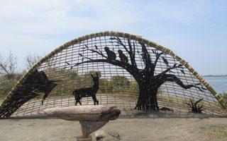 组图:国际环境艺术节  关切成龙湿地的未来