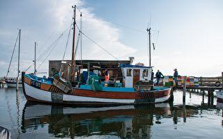 海上遇风暴 鱼群涌现渔民哥大丰收
