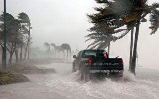 """台风""""无花果""""可能生成 午后大雨下整周"""