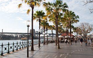 寒流來襲 悉尼本週末預計將大幅降溫